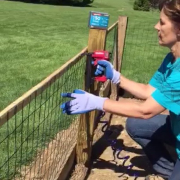 Arrow Spotlight Day 2: This fencing project from Karen of Pennsylvania, who said this is one of her absolute favorite Arrow tools! And she's not alone. Our Pneumatic Staple Gun (PT50) has an almost ️️️️️ rating! Click the link in our profile to take a closer look at the tool.