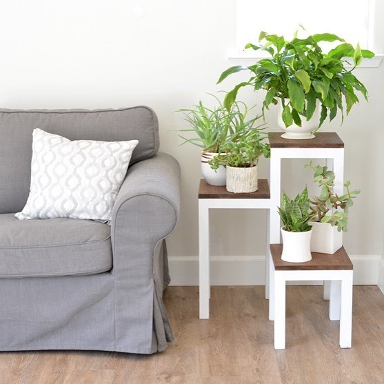 DIY tiered plant stand from @CentsationalGirl? Don't mind if we do! (Tutorial in bio!)
