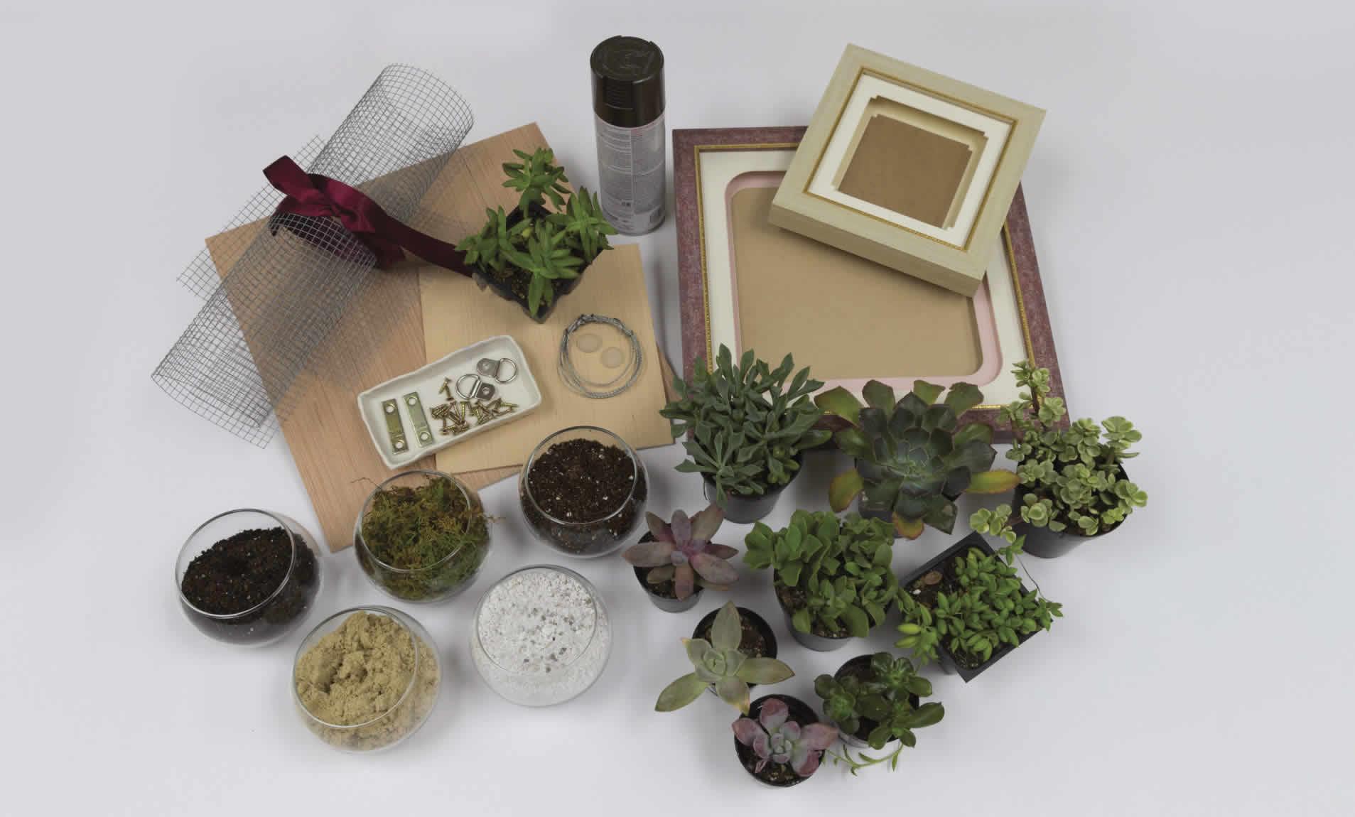 vert-succulent-garden-arrow-project-supplies.jpg